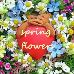 春の花ライドオンハート