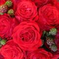 パレット赤バラ