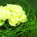 パレットホワイト・バラの器